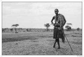 Berger Masaï